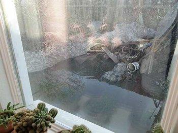 Подтопления в Усть-Каменогорске в период с 17 по 19 апреля